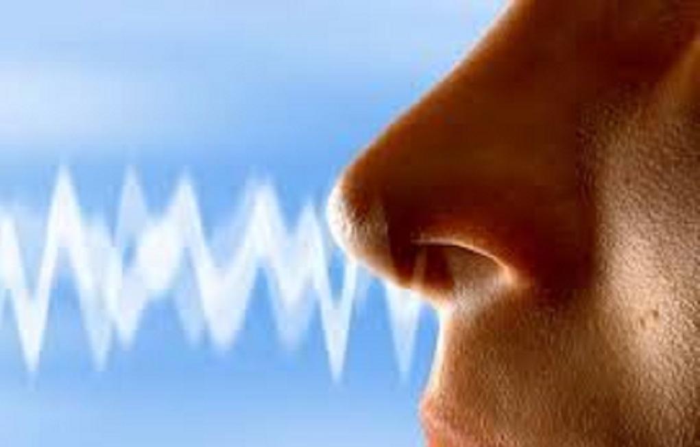 """Resultado de imagen para Si has perdido el sentido del olfato o el gusto, podrías ser un """"portador oculto"""" del coronavirus"""